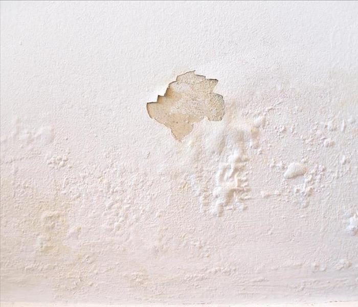 peeling paint on wall from moisture