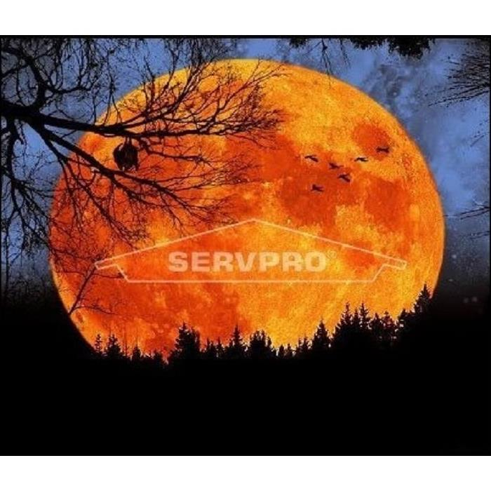 Happy Halloween from your friends at SERVPRO of Medford/Everett!
