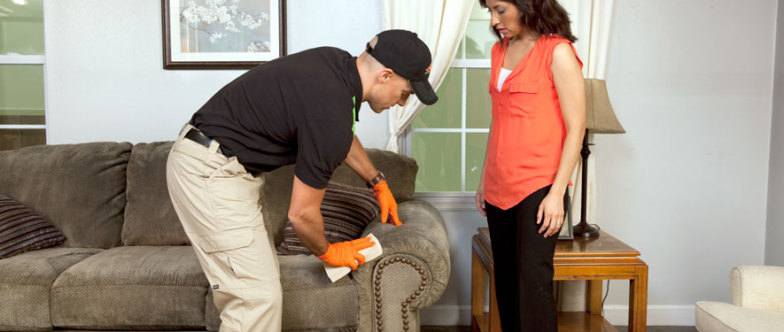 Medford, MA carpet upholstery cleaning